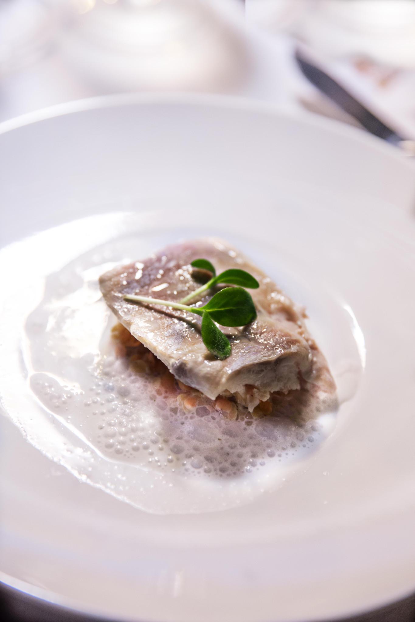 Filet d'omble chevalier, émulsion au thé vert, lentille corail et menthe Jeremy galvan DEF