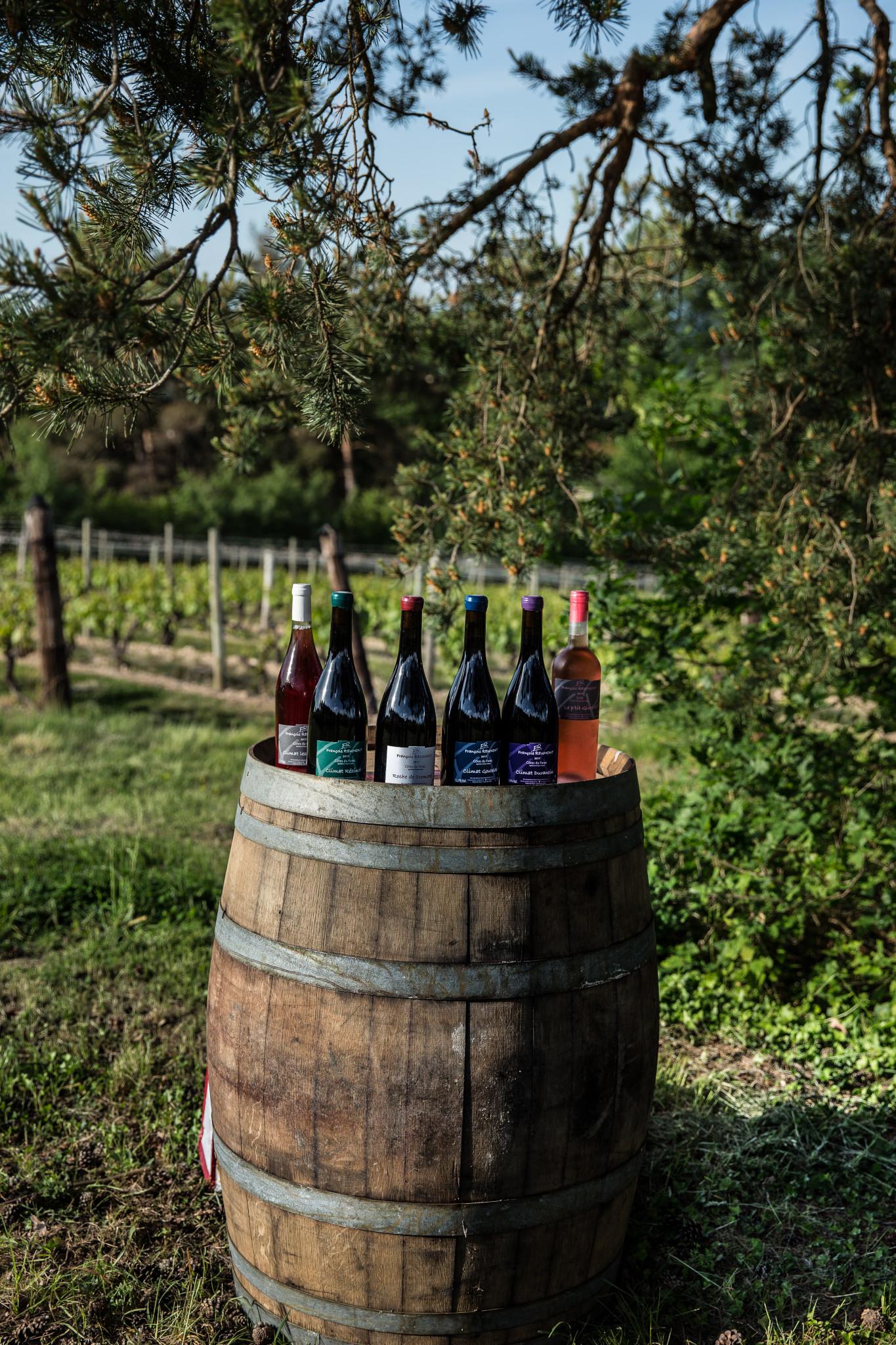 Vin francois reumont (1 sur 1)