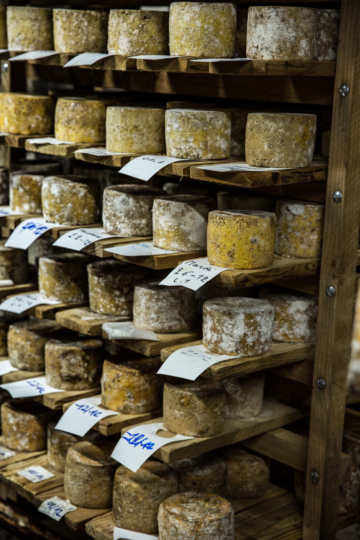 affinage tomme fromagerie hautes chaumes