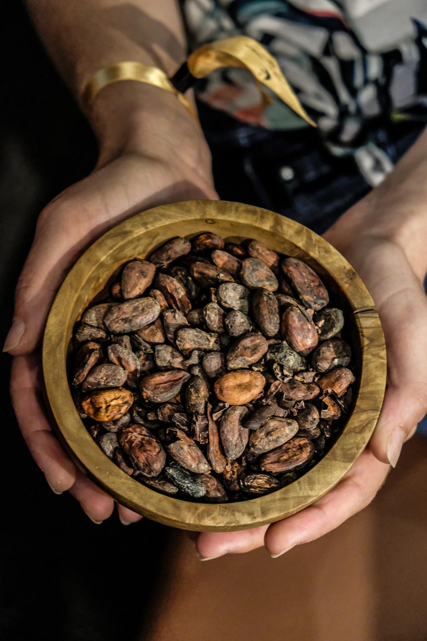 cite chocolat valrhona feve de cacao (1 sur 1)