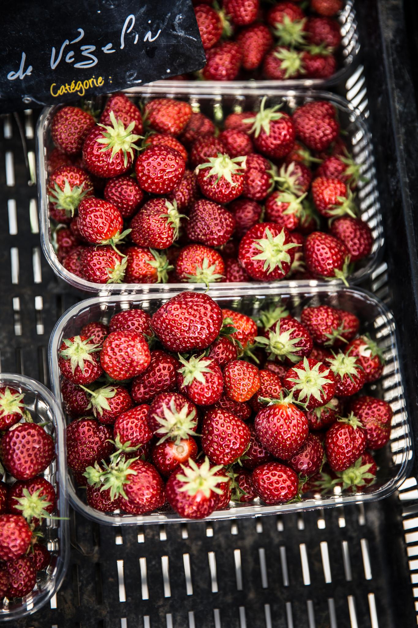 Marché montbrison fraises (1 sur 1)