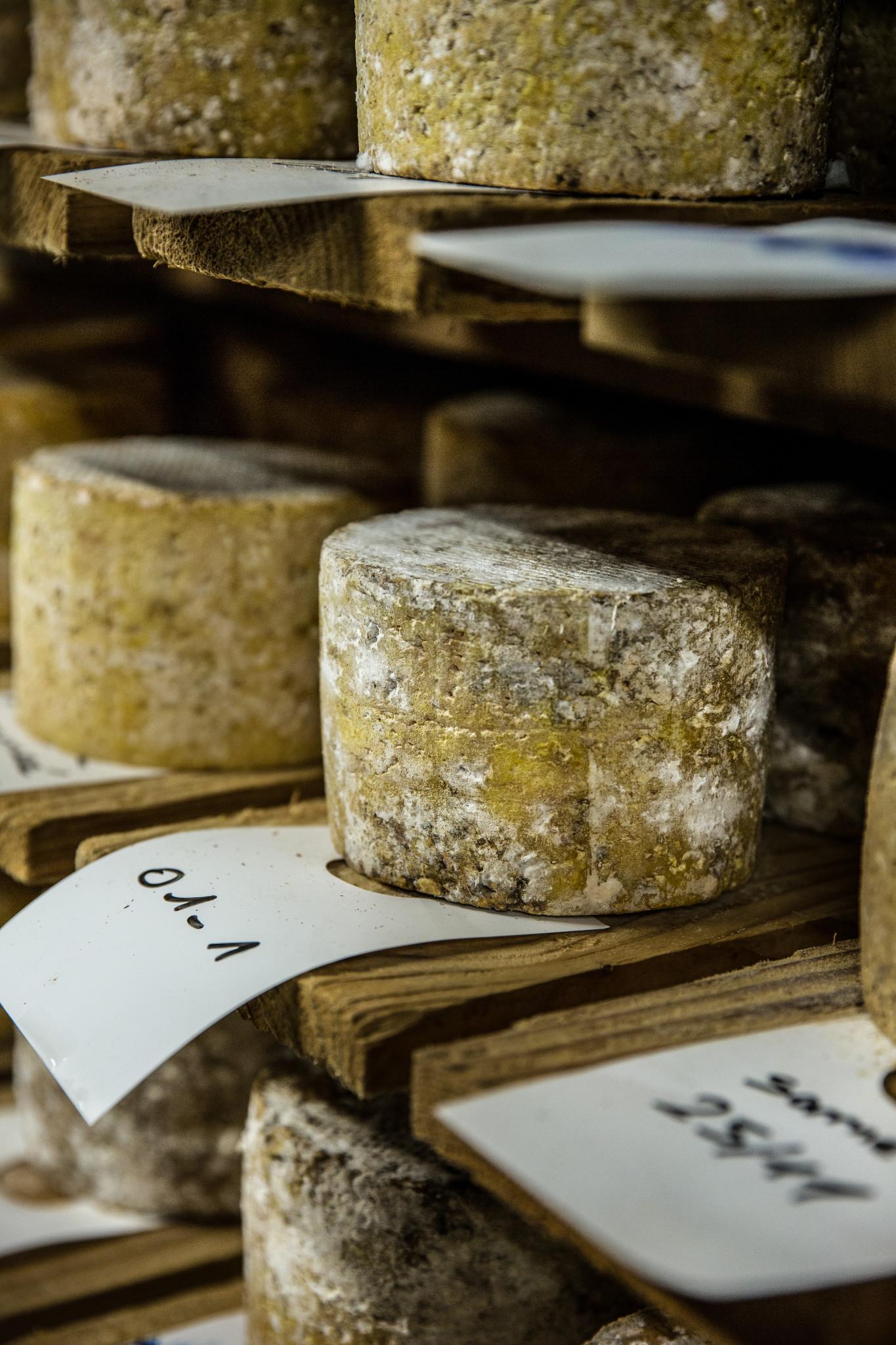 affinage de la tomme fromagerie hautes chaumes